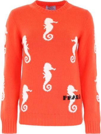 Prada Sea Horse Pull
