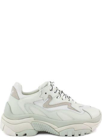 Ash White Addict Sneakers