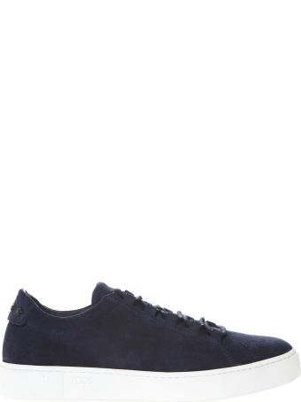 Tod's Sneakers In Blue Suede