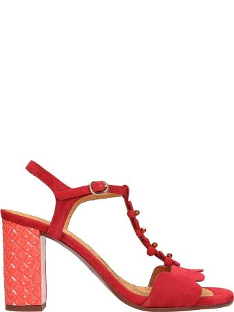 Chie Mihara Red Suede Beijo Sandals