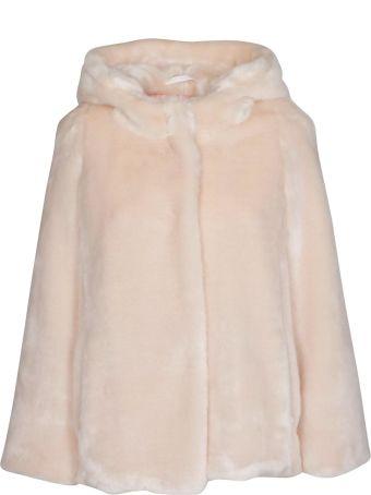 Tagliatore Hooded Jacket