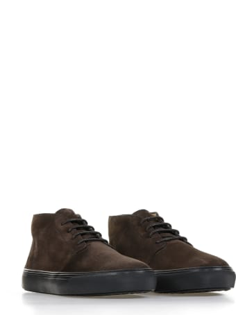 Tod's Ankle Boots In Dark Brown Suede Leather