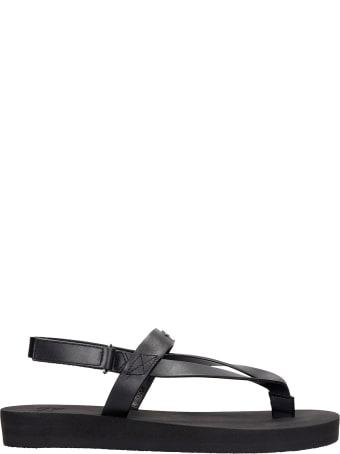 Giuseppe Zanotti Hydra Flats In Black Leather