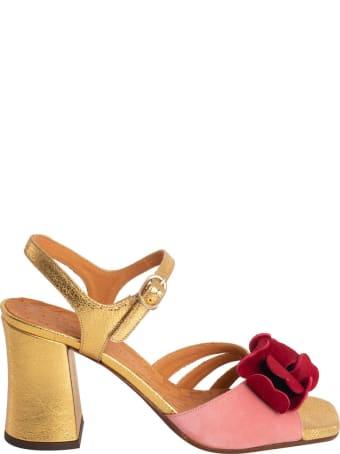 Chie Mihara Piroca Sandal In Suede