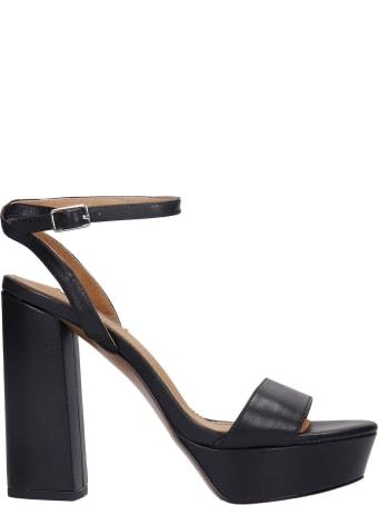 Bibi Lou Sandals In Black Leather