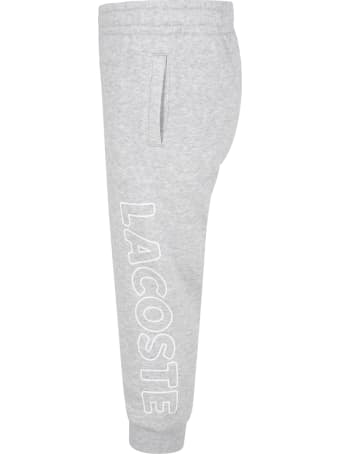 Lacoste Grey Sweatpant For Boy With Logo