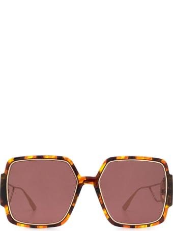 Dior Dior 30montaigne2 Havana Sunglasses