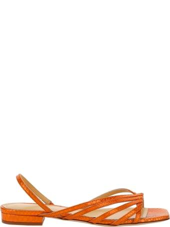 Giannico Aurora Sandals
