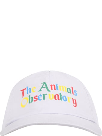 The Animals Observatory Purple Hat For Kids