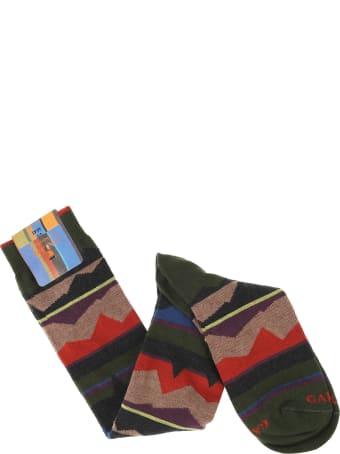 Gallo Socks