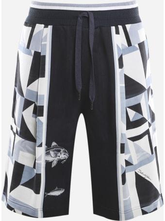 Dolce & Gabbana Cotton Shorts With Majolica Print