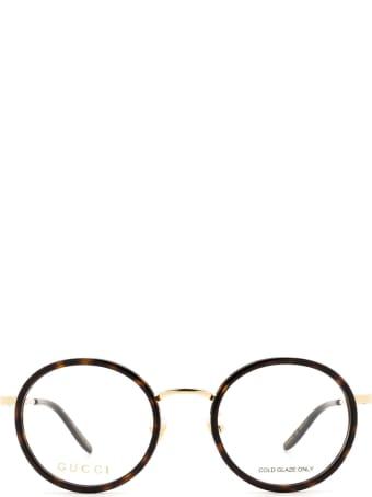 Gucci Gucci Gg0679oa Havana Glasses