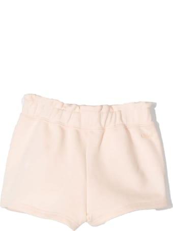 Chloé Pink Cotton Shorts