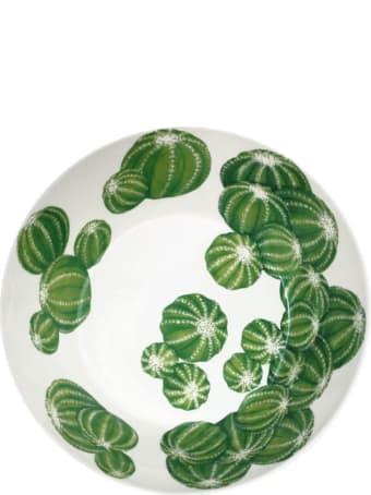 Taitù Medium Bowl - Cactus Collection