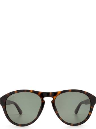 Gucci Gucci Gg0747s Havana Sunglasses