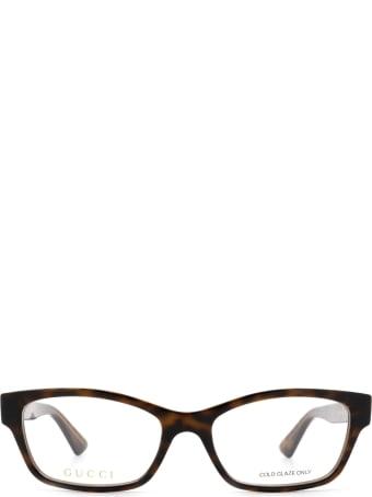 Gucci Gucci Gg0635o Havana Glasses