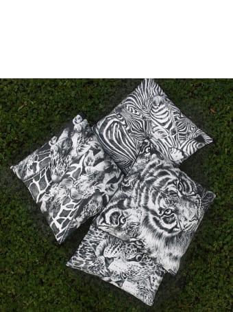 Taitù Square Cushion Zebra - Wild Spirit Collection