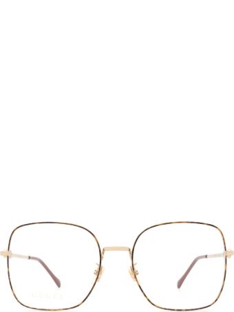 Gucci Gucci Gg0883oa Havana & Gold Glasses