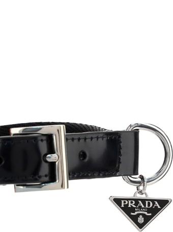 Prada Dog Collar