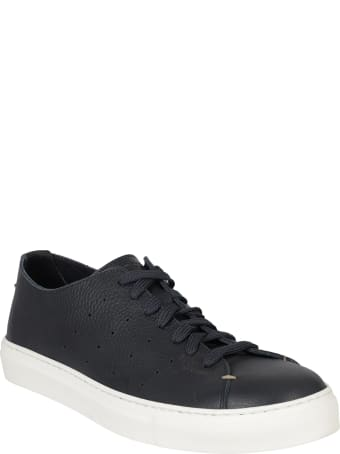 Seboy's Sneakers