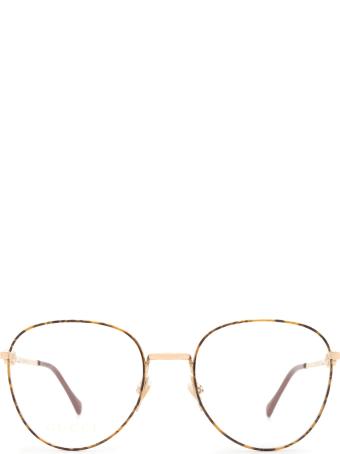 Gucci Gucci Gg0880o Gold / Havana Glasses