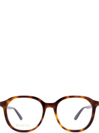 Gucci Gucci Gg0932oa Havana Glasses