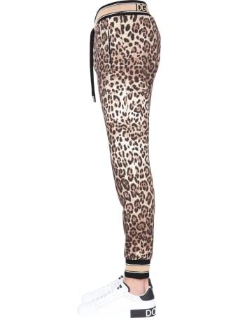 Dolce & Gabbana Jogging Pants With Leopard Print