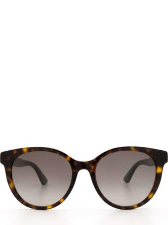Gucci Gucci Gg0702sk Havana Sunglasses