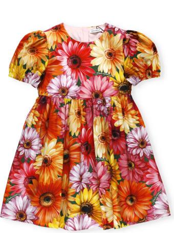 Dolce & Gabbana Gerbere Dress