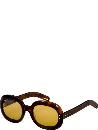 Gucci Gucci Gg0497s Havana Sunglasses