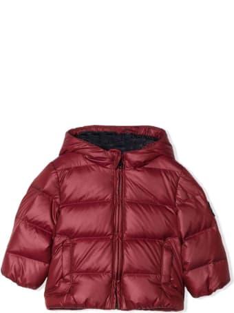Fay Dark Red Puffer Jacket