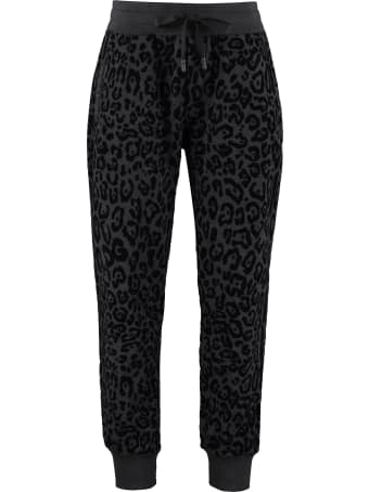 Dolce & Gabbana Printed Cotton Track-pants