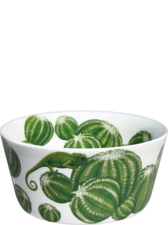 Taitù Set of 4 Small Bowls - Cactus Collection