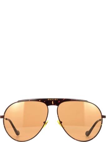 Gucci Gucci Gg0908s Havana Sunglasses