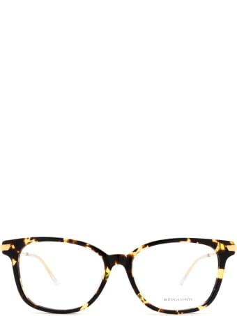 Bottega Veneta Bottega Veneta Bv1074oa Havana Glasses