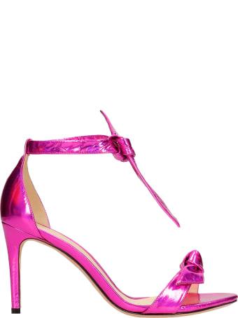 Alexandre Birman Sandals In Fuxia Leather