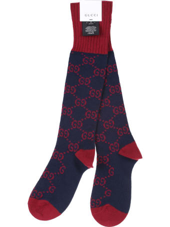 Gucci blue and red cotton sock
