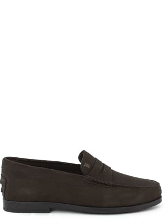 Tod's Loafers In Brown Suede