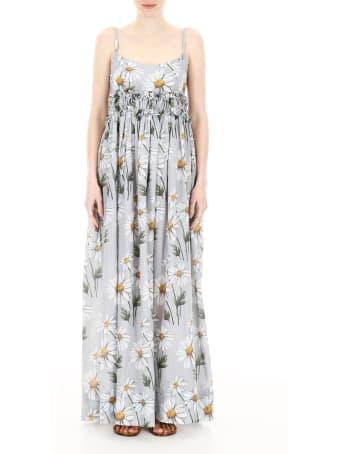 Scrambled Ego Daisy Print Dress