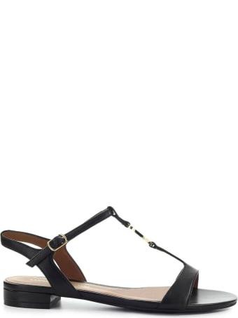 Emporio Armani Black Flat Sandal