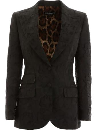 Dolce & Gabbana Turtlington Jacket