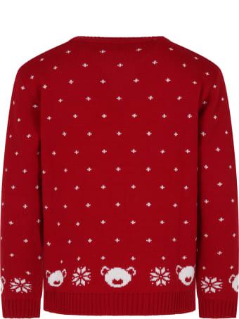 Little Bear Red Sweater For Kids
