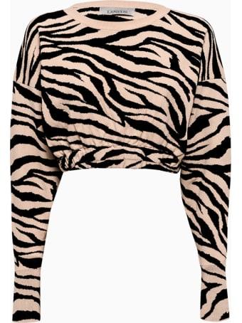 Laneus Sweater Magd1427
