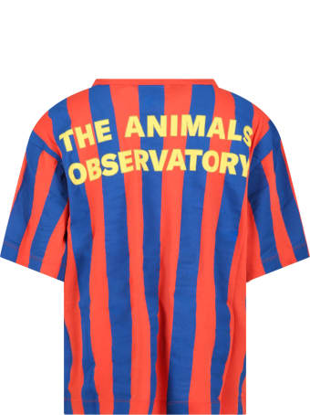 The Animals Observatory Multicolor T-shirt For Kids