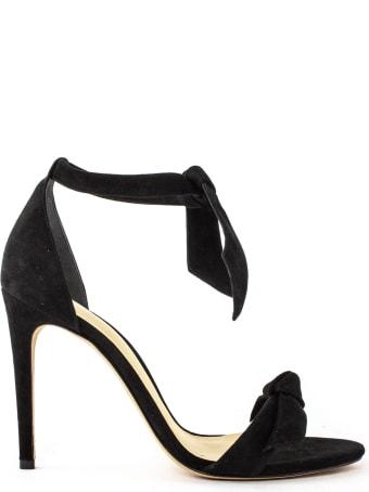 Alexandre Birman Clarita 100 Sandal