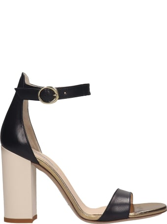 Fabio Rusconi Sandals In Black Leather