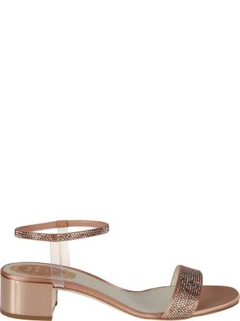 René Caovilla Elastica Sandals
