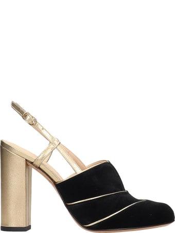 Chie Mihara Do-darlin Sandals In Black Velvet