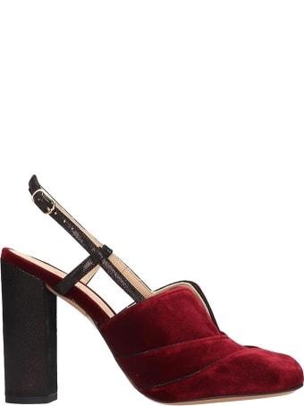 Chie Mihara Do-darlin Sandals In Bordeaux Velvet