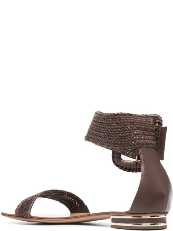 Casadei Low Sandal In Brown Hanoi With Maxi Buckle